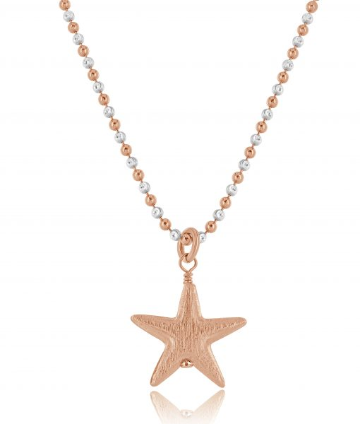 Rose Star necklace