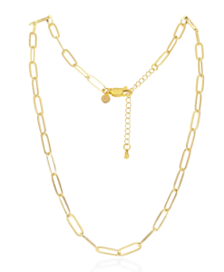 Penny Gold Link Necklace